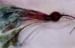 image of watercolor painting Beet by David Ladmore