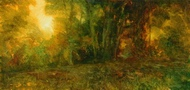 image of landscape oil painting Forest Light 19 by David Ladmore