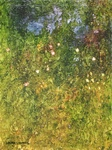 image of oil painting Night Garden #2 by Laurie Ladmore